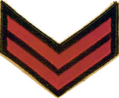 Kara Kuvvetleri Komutanlığı Rütbe ve İşaretleri 20 – 01icer131