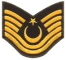 Kara Kuvvetleri Komutanlığı Rütbe ve İşaretleri 14 – 01icer231
