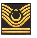 Kara Kuvvetleri Komutanlığı Rütbe ve İşaretleri 12 – 01icer81