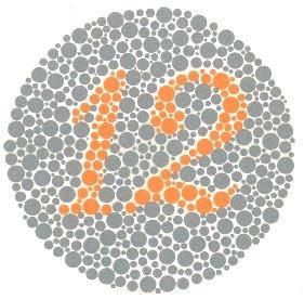 Renk Körü Olanlar ve Normal Görenler 12 Olarak Görür