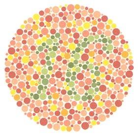 Renk Körlüğü Sözleşmeli Er, Uzman Erbaş, Subay veya Astsubay Olmaya Engel Midir ? 3 – 41