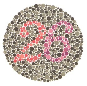 Renk Körlüğü Sözleşmeli Er, Uzman Erbaş, Subay veya Astsubay Olmaya Engel Midir ? 5 – 71